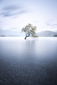 Long exposure; A single tree stands in the water of the Wanaka Lake, South Island of New Zealand